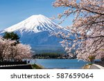 mount fuji with cherry blossom... | Shutterstock . vector #587659064