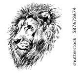 hand sketch lion head. vector... | Shutterstock .eps vector #587673674