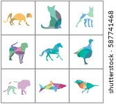 big set of colorful animal... | Shutterstock .eps vector #587741468