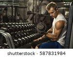 feel the biceps burn. muscular... | Shutterstock . vector #587831984