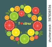citrus fruits. flat style... | Shutterstock .eps vector #587838536