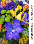 Small photo of Floral background of vanda orchid flowers, roses . Close up