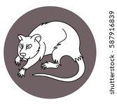 vector line art icon ugly rat... | Shutterstock .eps vector #587916839
