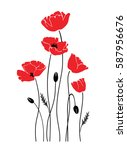 vector isolated poppies | Shutterstock .eps vector #587956676