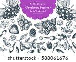 berries hand drawn vector... | Shutterstock .eps vector #588061676