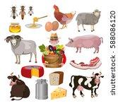 set of vector farm animals   Shutterstock .eps vector #588086120