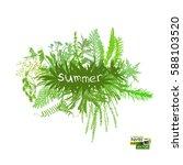 frame with grass. vector | Shutterstock .eps vector #588103520