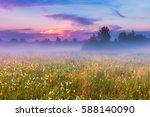 Wild Foggy Meadow Landscape....
