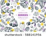 berries hand drawn  vector... | Shutterstock .eps vector #588141956