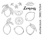 lemons set. vector sketch ... | Shutterstock .eps vector #588176564