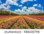 kibbutz field next to the gaza... | Shutterstock . vector #588230798