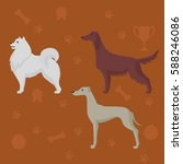dog breeds silhouettes... | Shutterstock .eps vector #588246086
