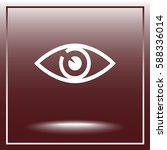 Eye Sign Icon  Vector...