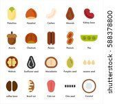 various types of nuts vector... | Shutterstock .eps vector #588378800