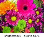 beautiful chrysanthemum as... | Shutterstock . vector #588455378