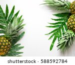 tropical background with a... | Shutterstock . vector #588592784