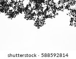 beautiful tree branch isolated... | Shutterstock . vector #588592814