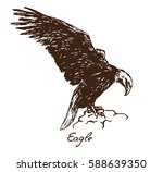 Eagle Sitting On The Rock  Wit...