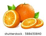 oranges. vector illustration of ... | Shutterstock .eps vector #588650840