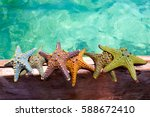 color starfishes on wooden boat | Shutterstock . vector #588672410