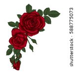 beautiful bouquet with red... | Shutterstock .eps vector #588775073