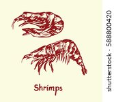 shrimps  with inscription  hand ... | Shutterstock .eps vector #588800420
