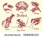 shellfish set   krill  crab ... | Shutterstock .eps vector #588808103