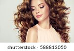 brunette  girl with long  and ... | Shutterstock . vector #588813050