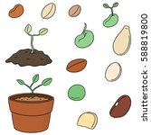 vector set of plant seed | Shutterstock .eps vector #588819800