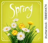 fresh spring  daisies and... | Shutterstock .eps vector #588854474