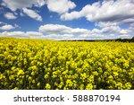 rape fields northern poland  | Shutterstock . vector #588870194