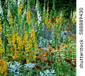 mixed border of colorful... | Shutterstock . vector #588889430