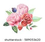 hand painted watercolor... | Shutterstock . vector #589053620