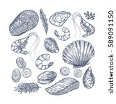 seafood collection. engraved... | Shutterstock .eps vector #589091150