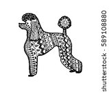 "illustration ""poodle dog"" was... 