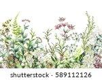 seamless rim. border with herbs ... | Shutterstock . vector #589112126