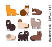 Stock vector set of different cartoon cats vector illustration isolated on white background 589114664
