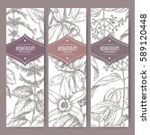 set of three labels with... | Shutterstock .eps vector #589120448