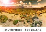 lunar landscape in tenerife... | Shutterstock . vector #589151648