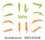 cereals icon set with barley....   Shutterstock .eps vector #589153448