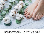 beauty treatment for woman feet ... | Shutterstock . vector #589195730