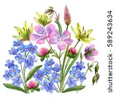 watercolor bouquet with wild... | Shutterstock . vector #589243634