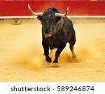 bull   Shutterstock . vector #589246874