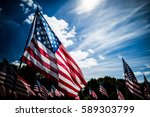 Field Of North American Flags
