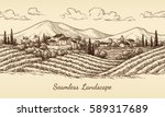 vineyard seamless landscape.... | Shutterstock .eps vector #589317689