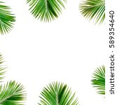 tropical exotic palm branches... | Shutterstock . vector #589354640