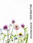 summer flowers | Shutterstock . vector #589384748