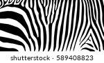 stripe animal jungle texture...   Shutterstock .eps vector #589408823