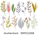 set with fantasy plants and... | Shutterstock .eps vector #589521008