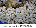 Small photo of garlic/White garlic as a spice for cooking good health.
